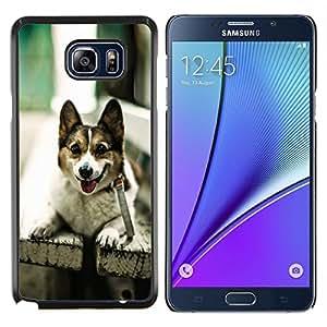 EJOOY---Cubierta de la caja de protección para la piel dura ** Samsung Galaxy Note 5 5th N9200 ** --Divertido admiten perros en un banco