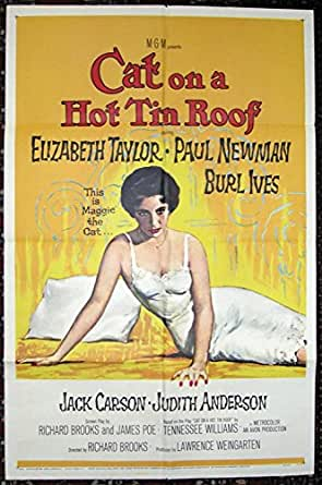 This Cat S On A Hot Tin Roof Instruments