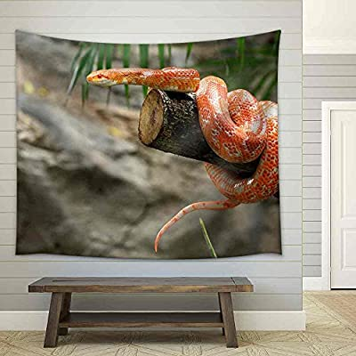 Unbelievable Piece of Art, it is good, Corn Snake on a Branch Fabric Wall