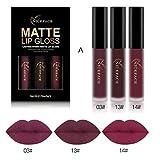 Tenworld 3PCS Sexy Lip Gloss Kit Waterproof Matte Liquid Lipstick (A)