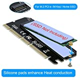 RIITOP NVMe Adapter M.2 PCIe SSD to PCI-e x4/x8/x16 Converter Card with Heat Sink for M.2 (M Key) NVMe SSD 2280/2260/2242/2230