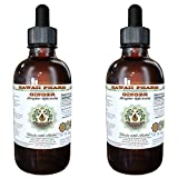 Ginger Alcohol-FREE Liquid Extract, Organic Ginger (Zingiber officinale) Dried Root Glycerite 2x4 oz