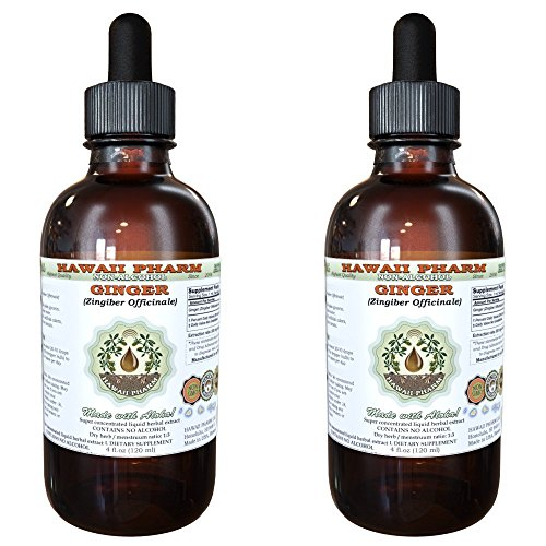 Ginger Alcohol-FREE Liquid Extract, Organic Ginger (Zingiber officinale) Dried Root Glycerite Hawaii Pharm Natural Herbal Supplement 2x4 oz by HawaiiPharm