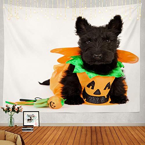 Aberdeen Halloween Contacts - Shrahala Halloween Tapestry, Scottish Terrier Dog