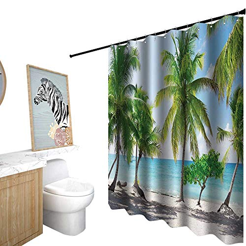 Shower Curtains Kids Boys,Beach,Palm Leaves and Catalina Island Seashore Coastal Panoramic Picture Print,Shower Curtain for Girls,W72 x L96,Blue Ivory Green