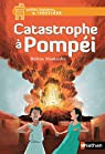 Catastrophe à Pompéi par Montardre