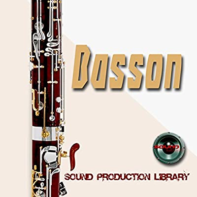 Basson Real - Large Unique 24bit WAVE/KONTAKT Multi-Layer Studio Samples Production Library on DVD or download from SoundLoad