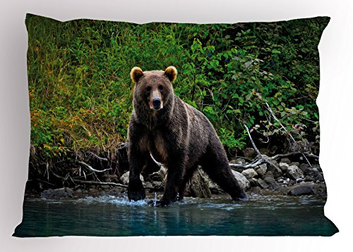 Lunarable Cabin Pillow Sham, Grizzly Brown Bear in Lake Alaska Untouched Forest Jungle Wildlife Image, Decorative Standard Queen Size Printed Pillowcase, 30