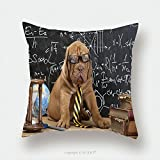 Custom Satin Pillowcase Protector Young Cute Dog In Front Of Blackboard During A Math Class Dogue De Bordeaux Puppy French Mastiff 186177059 Pillow Case Covers Decorative