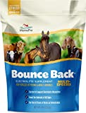 Manna Pro Bounce Back Electrolyte, 4 lb