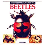 img - for The Fascinating World of Beetles book / textbook / text book