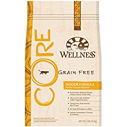 Wellness CORE Grain Free Indoor Dry Cat Food, Wellness - Net Wt. 2 LBS