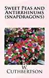 Sweet Peas and Antirrhinums (snapdragons), W. Cuthbertson, 1484017595