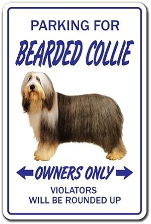 """Indoor//Outdoor SHEEPDOG Street Sign dog puppy breeder pet yard 18/"""" Wide"""