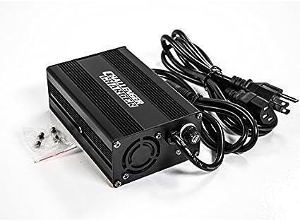 Amazon.com: 24 V 3 Ah SLA cargador de batería para Pride Go ...