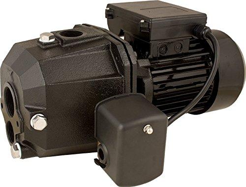 Star SJ10 1 HP Cast Iron Convertible Deep Well Jet Pump, Self Priming, 1 inch NPT Discharge ()