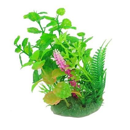 Amazon.com : eDealMax Planta de hierba Artificial acuario decoración, DE 5.1 pulgadas, Verde : Pet Supplies