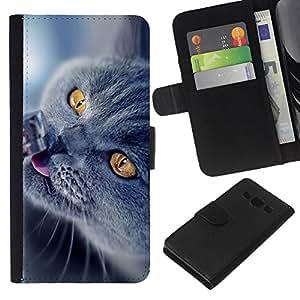JackGot ( British Shorthair azul ) Samsung Galaxy A3 la tarjeta de Crédito Slots PU Funda de cuero Monedero caso cubierta de piel
