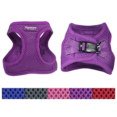 Downtown Pet Supply Best No Pull, Step in Adjustable Dog Harness with Padded Vest, Easy to Put on Small, Medium and Large Dogs (Purple, L) from Downtown Pet Supply