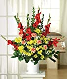 Gift of Colour Flowers - Flowers For Funeral - Funeral Flower Arrangements - Funeral Plants - Same Day Funeral Flowers - Condolence Flowers