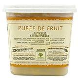 Pabana Puree (Passionfruit, Banana, Mango, Lemon) - 1 tub - 2.2 lbs