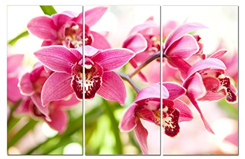 Stunning Views Beautiful Pink Orchids Flowers - Multi Panel
