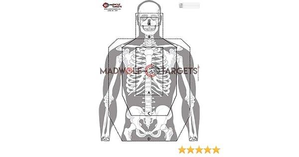 Pack 20 Siluetas Madwolf Targets Siluetas Tiro t/áctico Esqueleto - precisi/ón e instintivo 84,1 x 59,4 cm Multitarea