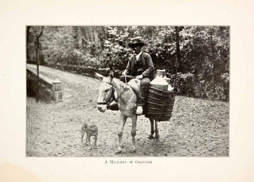 Vintage Milkman Costume (1901 Print Milkman Granada Spain Portrait Donkey Dog Landscape Costume Street - Original Halftone Print)