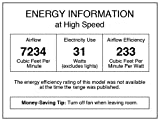 Westinghouse Lighting 7203900 Techno II 72-inch
