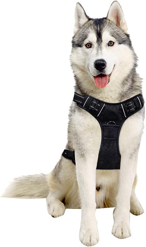 Arnés para perro Tail UP – Ajustable sin tirones reflectante arnés ...