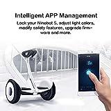 Segway Ninebot S Smart Self-Balancing Electric