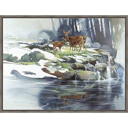 Black Forest Decor Calm Waters Framed Canvas