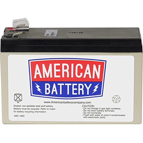 RBC17 UPS Replacement Battery for APC By American Battery