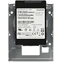 Lenovo 2.5-Inch 256 GB Internal Solid State Drive 4XB0F18671