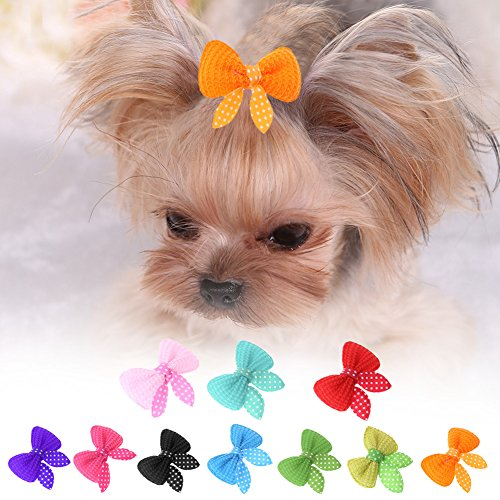 (Jocestyle 10pcs Pet Hair Accessories Dog Cat Mini Bow Hairpin Hair Clip Headdress)