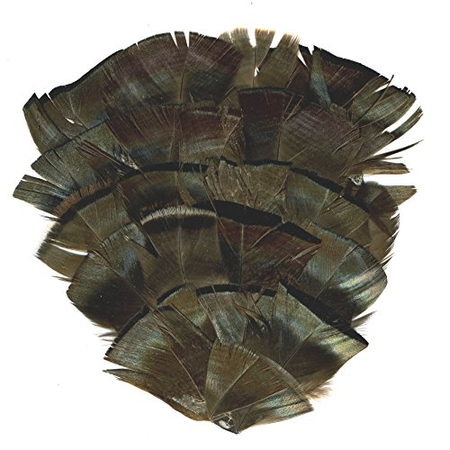 Natural Bronze Flat - ZUCKER Bronze Turkey Flats Feather Pad Feathers - Natural