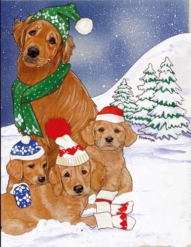 golden retriever christmas cards family 10 holiday cards with red envelopes adorable