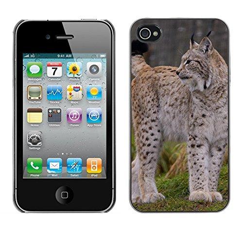 Premio Sottile Slim Cassa Custodia Case Cover Shell // F00016317 Gros chat // Apple iPhone 4 4S 4G