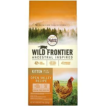 Amazon Nutro Cat Food