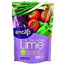 Encap 10612-6 Fast Acting Lime Pouch, 2.5 Pounds, 400-Square Feet
