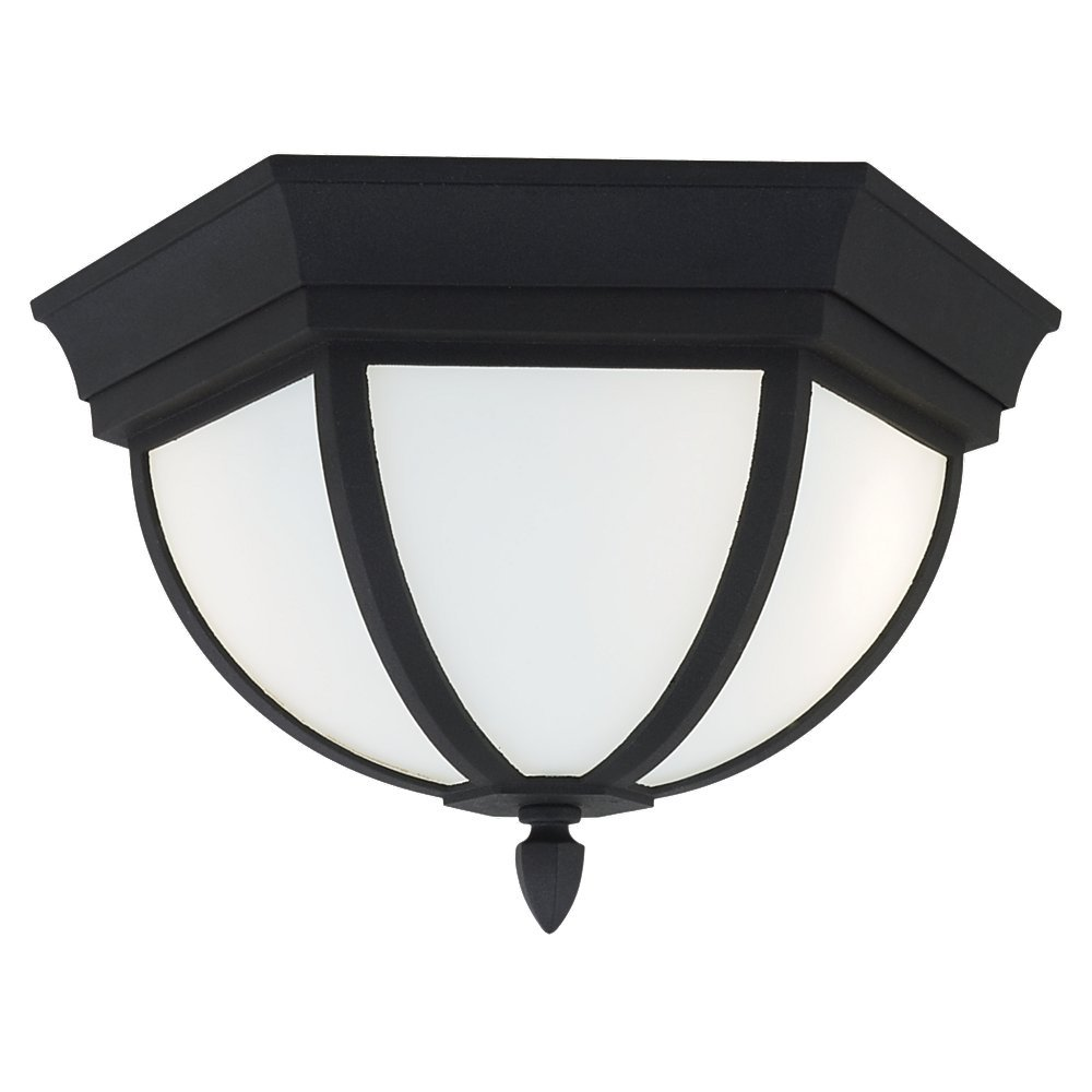 Sea Gull Lighting 79136BLE12 Bakersville Outdoor Ceiling Fixture, Black
