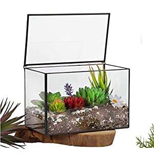 Ferrisland Glass Terrarium Mordern Rectangle Geometric Succulent Terrarium For Tabletop Decor Box Wlid 83x55x47