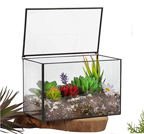 Ferrisland Glass Terrarium Mordern Rectangle Geometric Succulent Terrarium For Tabletop Decor Box Wlid 83x55x47