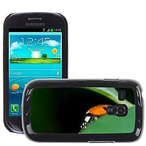 Super Stella Slim PC Hard Case Cover Skin Armor Shell Protection // M00145071 Ladybug Detail Ladybird Sedmite?n?? // Samsung Galaxy S3 MINI i8190