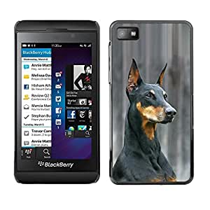 TopCaseStore / la caja del caucho duro de la cubierta de protección de la piel - German Pinscher Doberman Dog Black - Blackberry Z10
