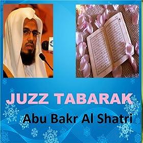 Abu Bakr al-Shatri