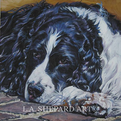 A English Springer Spaniel dog art portrait print of an LA Shepard painting 12x12