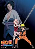 Great Eastern Entertainment Naruto Shippuden Naruto, Sakura, Sasuke Wall Scrol, 33 by 44-Inch