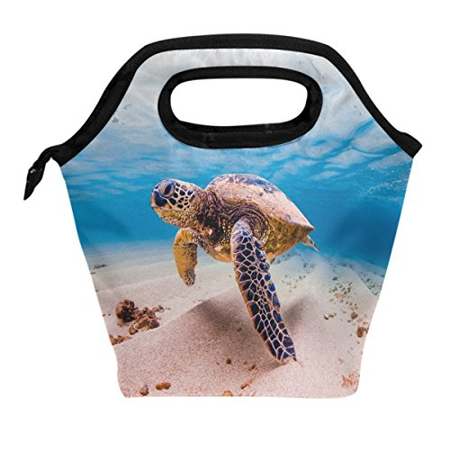 - ALAZA Lunch Tote Bag Sea Turtles Under Water Shell Insulated Cooler Thermal Reusable Bag, Ocean Turtles Beach Starfish Coral Lunch Box Portable Handbag for Men Women Kids Boys Girls