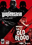 Wolfenstein: The Two-Pack - PC [video game]